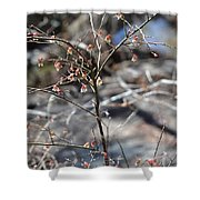 New Spring Buds Shower Curtain