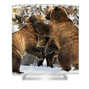 New Years Celebration Shower Curtain