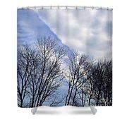 New Years Day Sunrise 2014 Shower Curtain