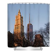 New York City Skyline Through The Trees Shower Curtain
