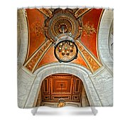 New York Public Library Ornate Ceiling Shower Curtain