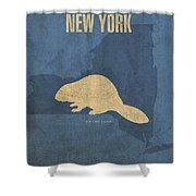 New York State Facts Minimalist Movie Poster Art  Shower Curtain