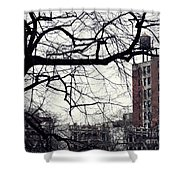 New York Winter Day 2 Shower Curtain