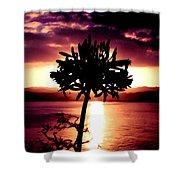 New Zealand Flower Sunset Shower Curtain