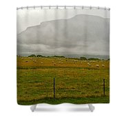 New Zealand Sheep Farm Shower Curtain