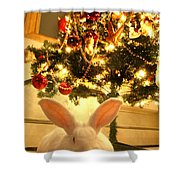 New Zealand White Rabbit Under The Christmas Tree Shower Curtain