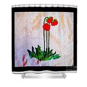 Newfoundland Pitcher Plant Shower Curtain