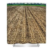 Newly Planted 14564 Shower Curtain