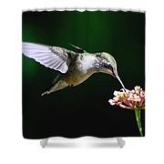 Next Blossom Shower Curtain
