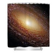 Ngc 2841 Shower Curtain