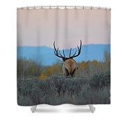 Nice Rack Shower Curtain