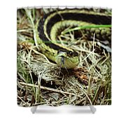 Nice To Sssssee You Shower Curtain