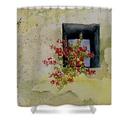 Niche With Flowers Shower Curtain