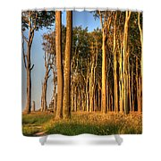 Nienhagen Shower Curtain