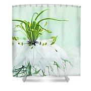 Nigella Damascena 'double White'  Shower Curtain