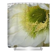 Night Blooming Cereus Cactus Shower Curtain