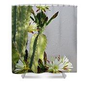 Night-blooming Cereus Shower Curtain