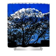Night Blues Shower Curtain