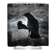 Mysterious Night Crows Shower Curtain