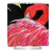 Night Flamingo Shower Curtain