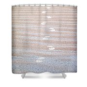 Night Beach Sand Footprints Shower Curtain