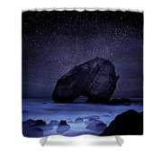 Night Guardian Shower Curtain by Jorge Maia