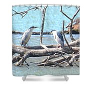 Night Herons Shower Curtain