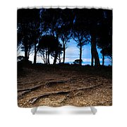 Night In The Forest Shower Curtain