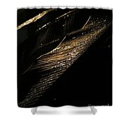 Night Leaves Shower Curtain