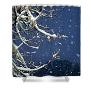 Night Snow Shower Curtain