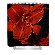 Night Time Lilly Shower Curtain