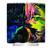 Nightly Rendezvous Shower Curtain