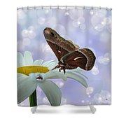 Nights In White Silk Shower Curtain