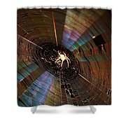 Nighttime Spider Web Shower Curtain