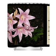 Nighttime Whisper With Poety Shower Curtain