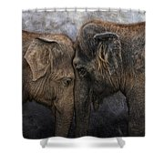 Nighty Night Darling Shower Curtain by Joachim G Pinkawa
