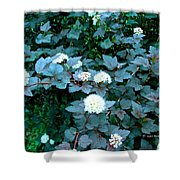 Ninebark Beauty Shower Curtain