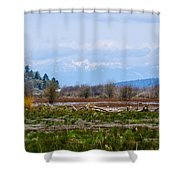 Nisqually Delta Of The Nisqually National Wildlife Refuge Shower Curtain