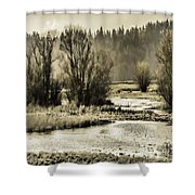 Nisqually Tide Pools Shower Curtain