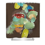 No. 1156 Shower Curtain