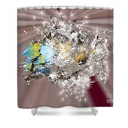 No. 1166 Shower Curtain