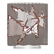 No. 170 Shower Curtain