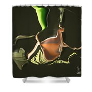 No. 333 Shower Curtain