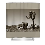 Joshua Tree National Park Landscape No 4 In Sepia  Shower Curtain