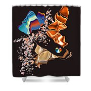 No. 459 Shower Curtain