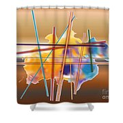No. 465 Shower Curtain