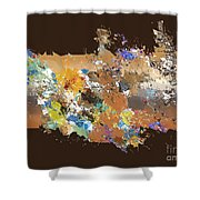 No. 487 Shower Curtain