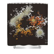 No. 559 Shower Curtain