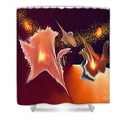 No. 571 Shower Curtain