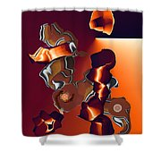 No. 576 Shower Curtain